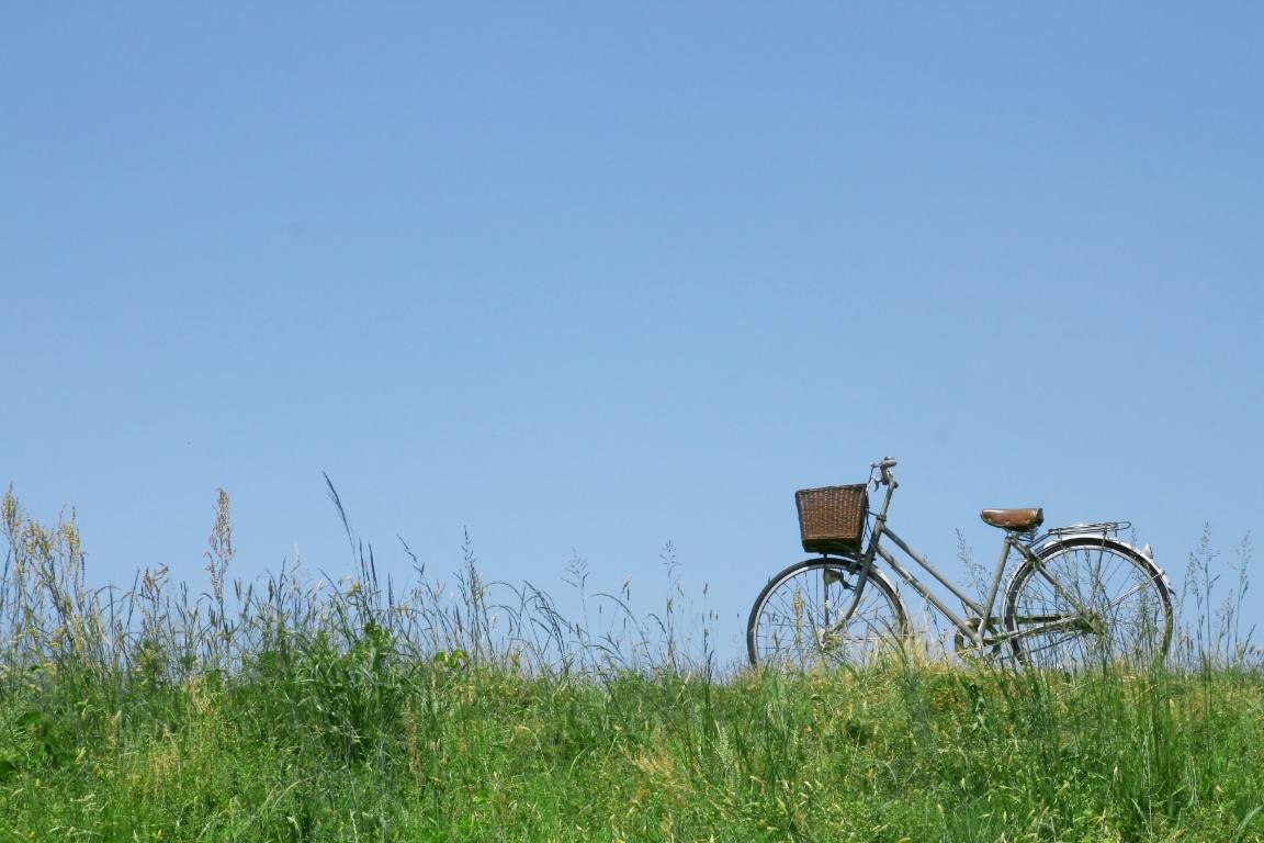 神奈川のバーベキュー付き体験農園のレンタルサイクル