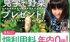 【冬季限定企画】12/27(火)までに畑をご見学の方に、採れたて冬野菜のお土産を差し上げます!